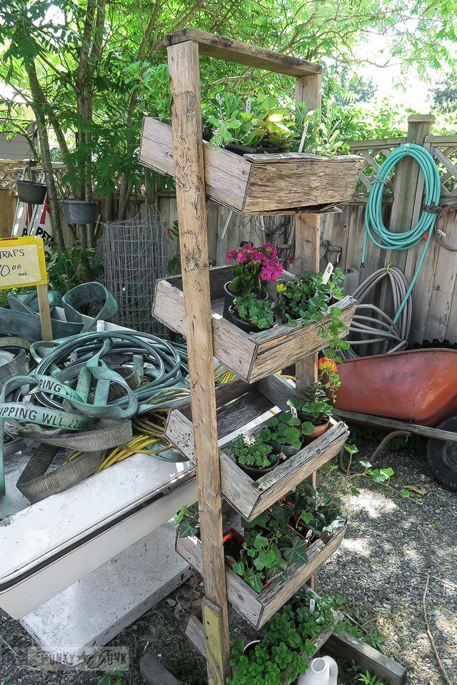 Rustic plant stand / Rusty's New and Used at Harrison Hot Springs / FunkyJunkInteriors.net