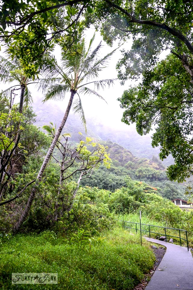 Iao Needle in Maui / An epic 6 weeks / funkyjunkinteriors.net