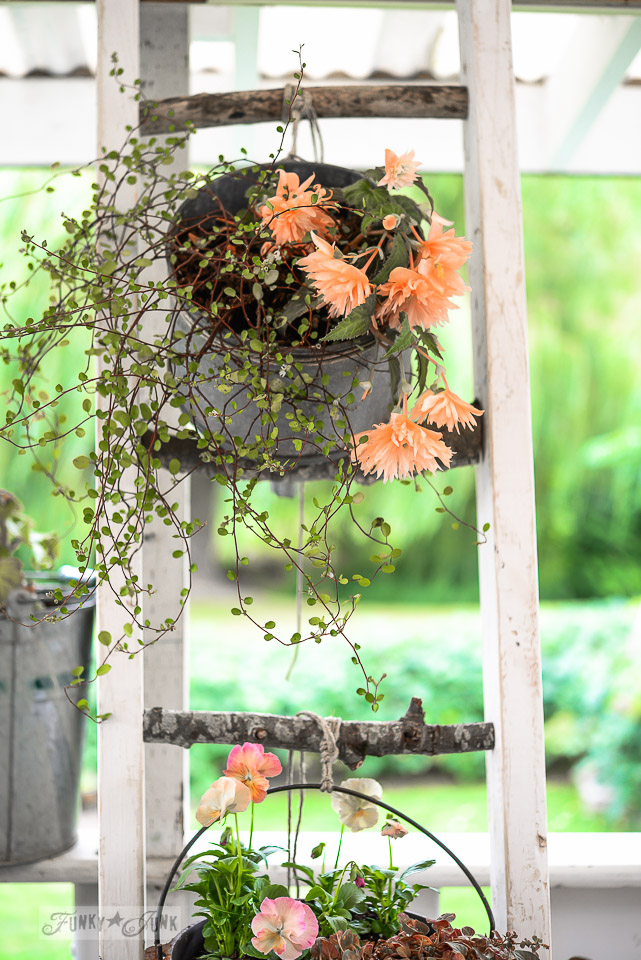 Flowers in an oil funnel hanging from a nature inspired branch ladder plant stand / funkyjunkinteriors.net