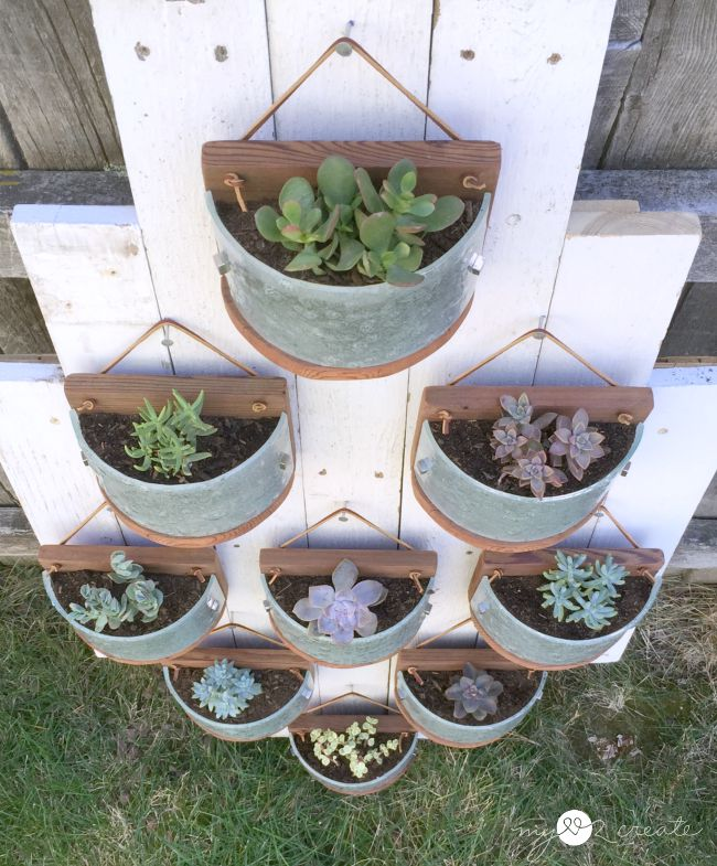 Hanging succulent planters made from light fixtures by MyLove2Create, featured on Funky Junk Interiors