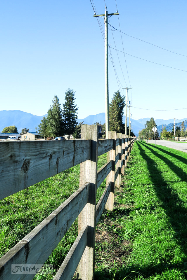 rustic wooden fence along a country road bike ride / funkyjunkinteriors.net