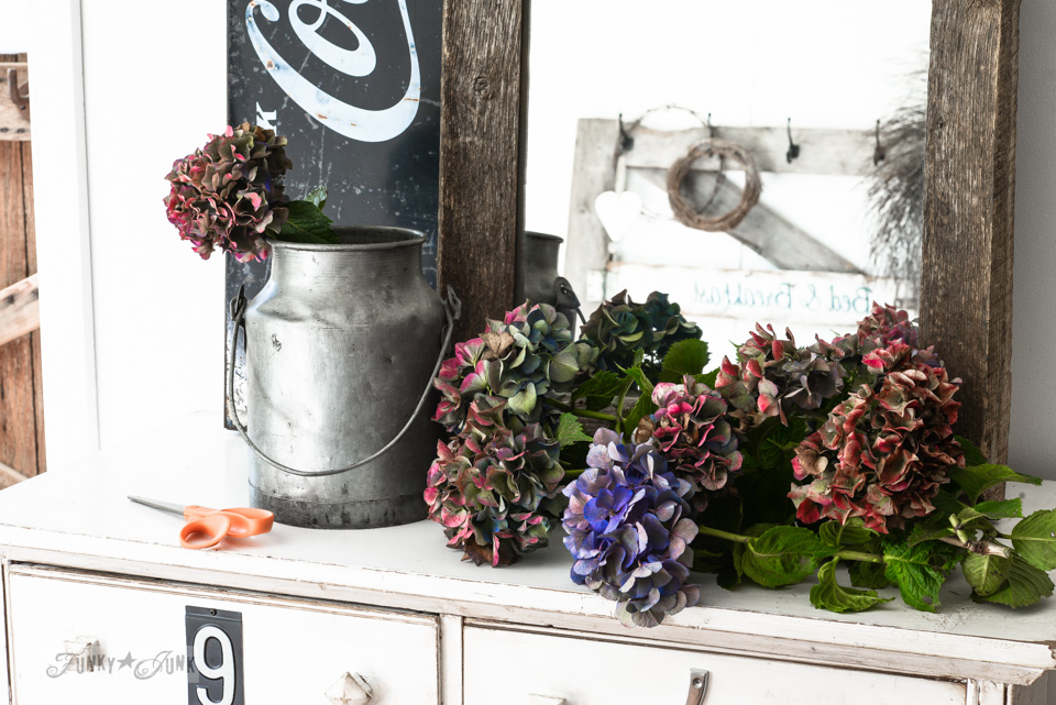 fall hydrangeas in a milk bucket for a dresser vignette / funkyjunkinteriors.net