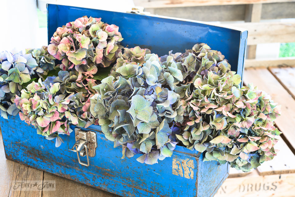 Hydrangea filled blue metal toolbox / funkyjunkinteriors.net