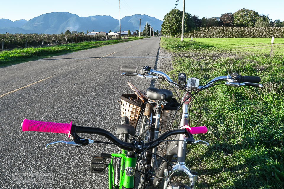 A country bike ride to my land, with my new partner / funkyjunkinteriors.net