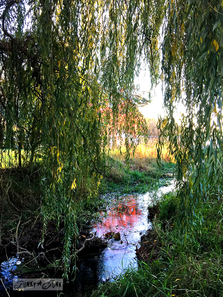 water reflection in a creek by a yellow swing / funkyjunkinteriors.net