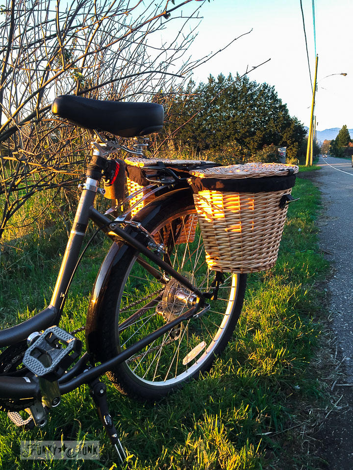A bike ride during golden hour to watch the sunset along a country road / funkyjunkinteriors.net