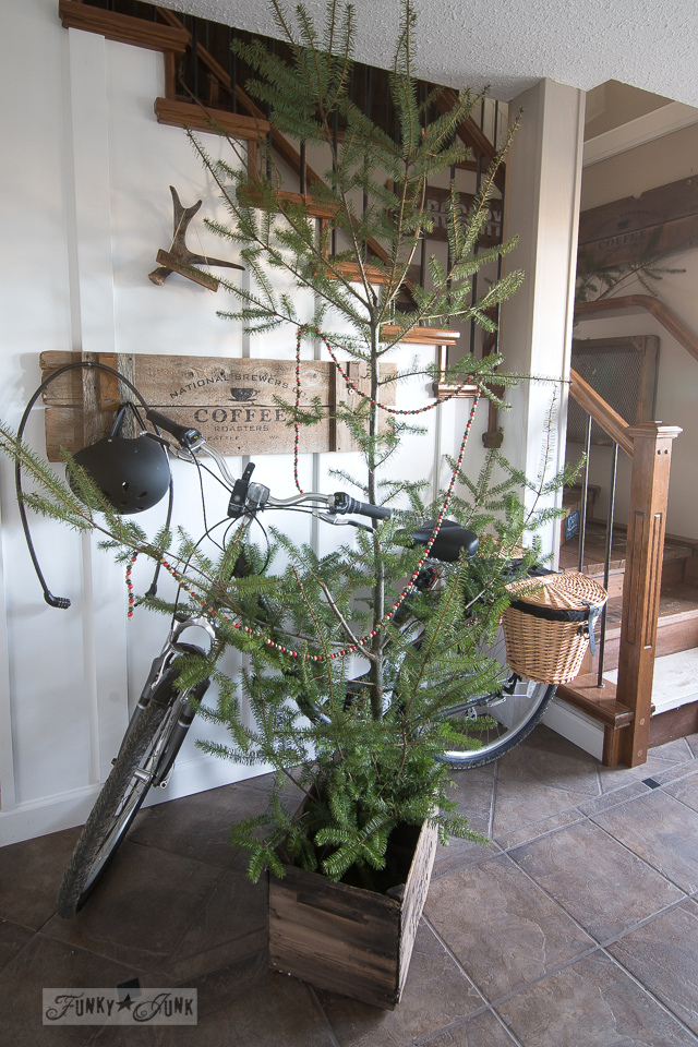 bike in an entry with a Christmas tree in a crate / funkyjunkinteriors.net