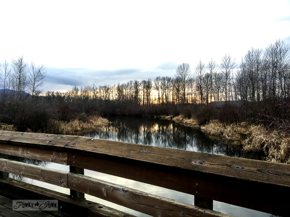 gorgeous sunset on the bridge that the Great Blue Heron Reserve in Chilliwack / funkyjunkinteriors.net