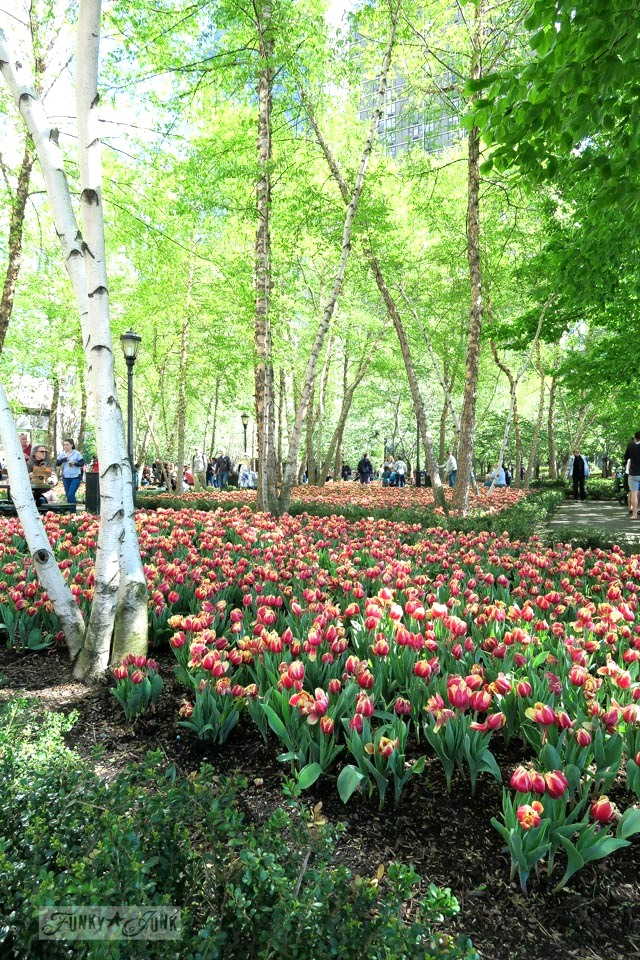Tulip and tree lined park grounds at the 9-11 Memorial in New York City / funkyjunkinteriors.net