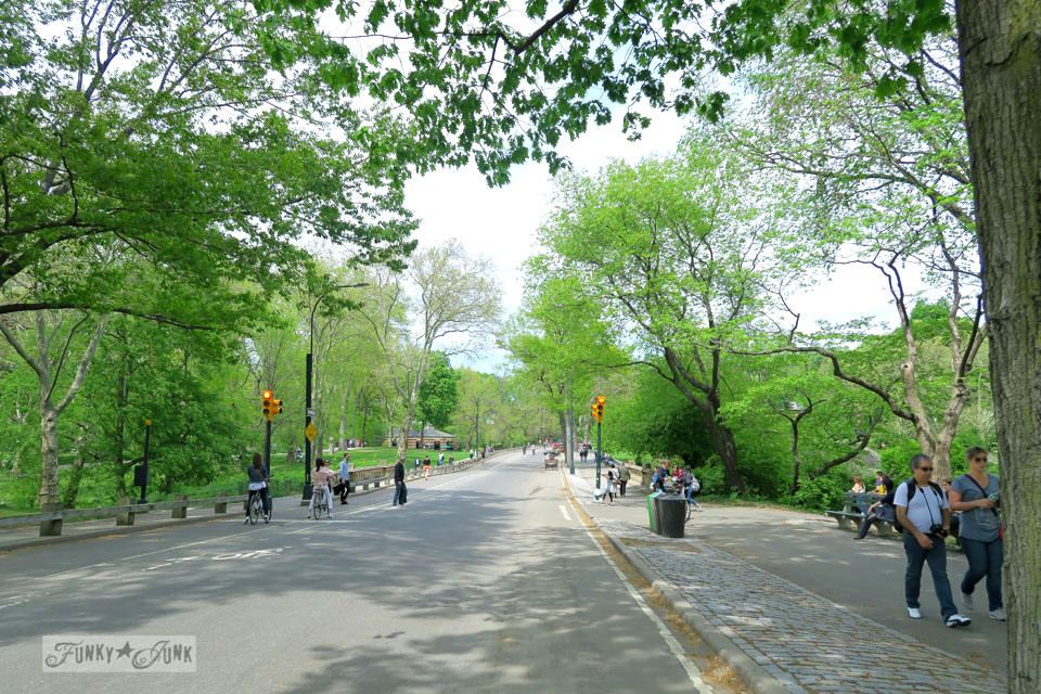 Bike roads in Central Park, New York City / funkyjunkinteriors.net