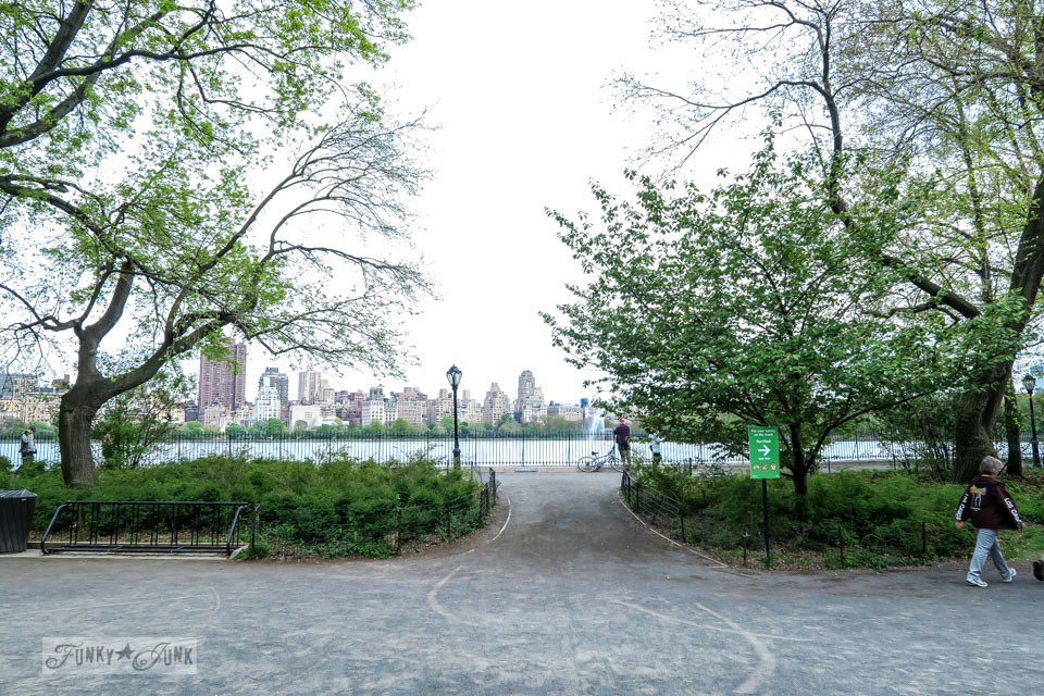 Walking paths through Central Park, New York City / funkyjunkinteriors.net