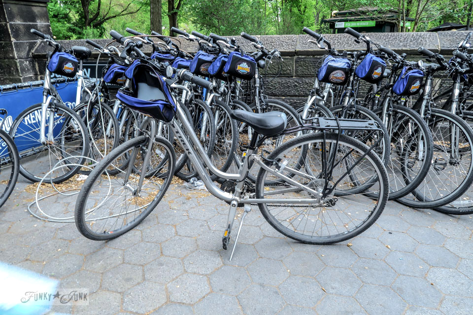 Rental bikes in Central Park, New York City / funkyjunkinteriors.net