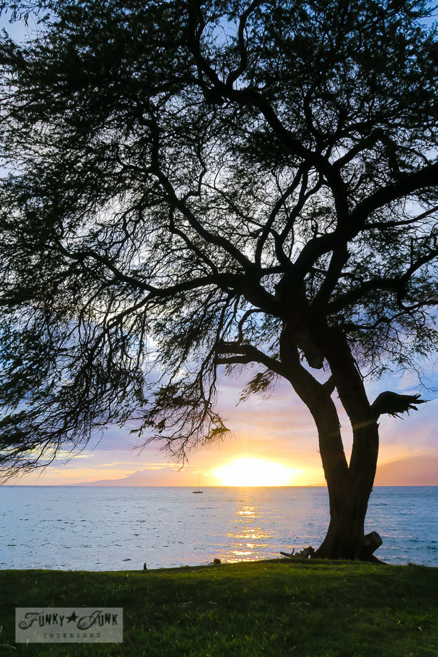 Sunset in the park in front of Kamaole Beach 3 in Kihei, Maui | funkyjunkinteriors.net