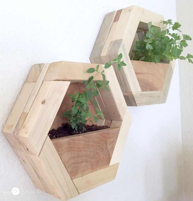 DIY hexagon planters on wall, by MyLove2Create, featured on Funky Junk Interiors