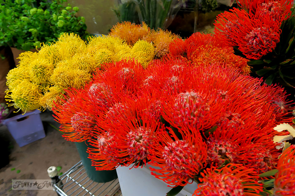 gorgeous red and yellow blooms! - The streets of the flower district in New York City / funkyjunkinteriors.net