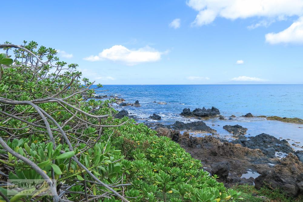 beach shoreline in Maui | funkyjunkinteriors.net