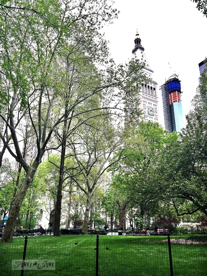 Madison Square Park, in New York City / funkyjunkinteriors.net