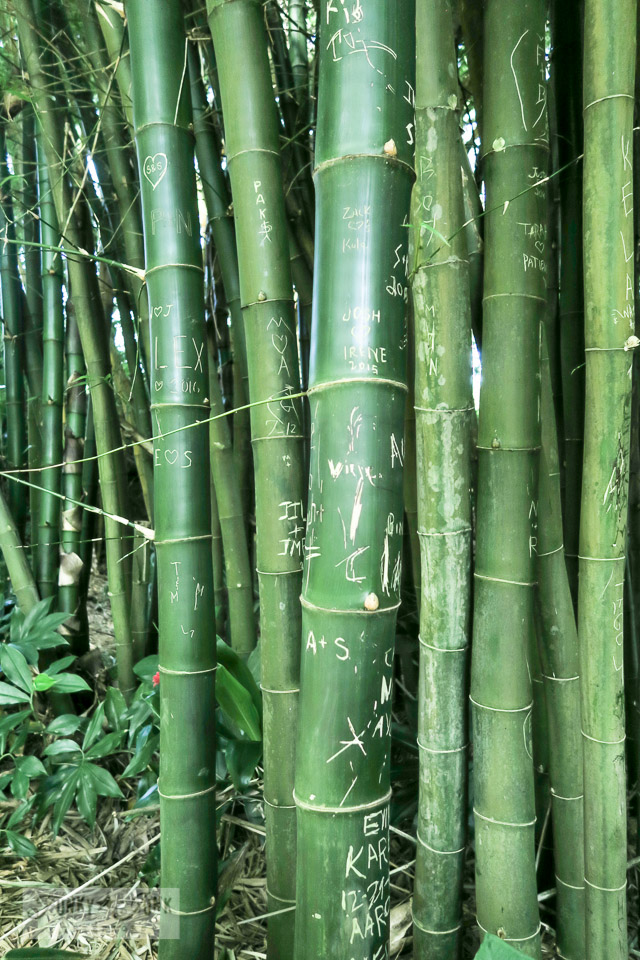 Carved bamboo in a bamboo forest at Twin Falls in Paia, Maui | funkyjunkinteriors.net