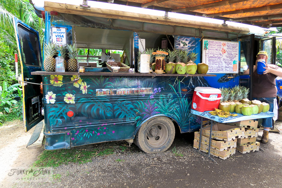 The Twin Falls Farm Stand, a Hawaiian decorated food truck at Twin Falls, Maui | funkyjunkinteriors.net