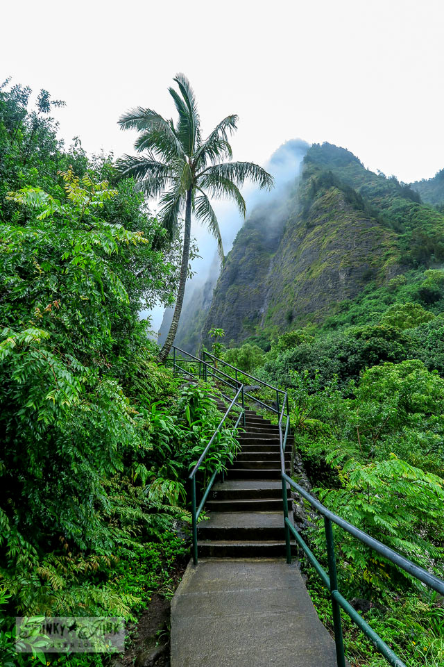 How to travel Hawaii - where to go, what to see, what to do, car rentals, airport shuttles, island hopping and more! Click for the complete guide! Shown: Iao Valley on Maui