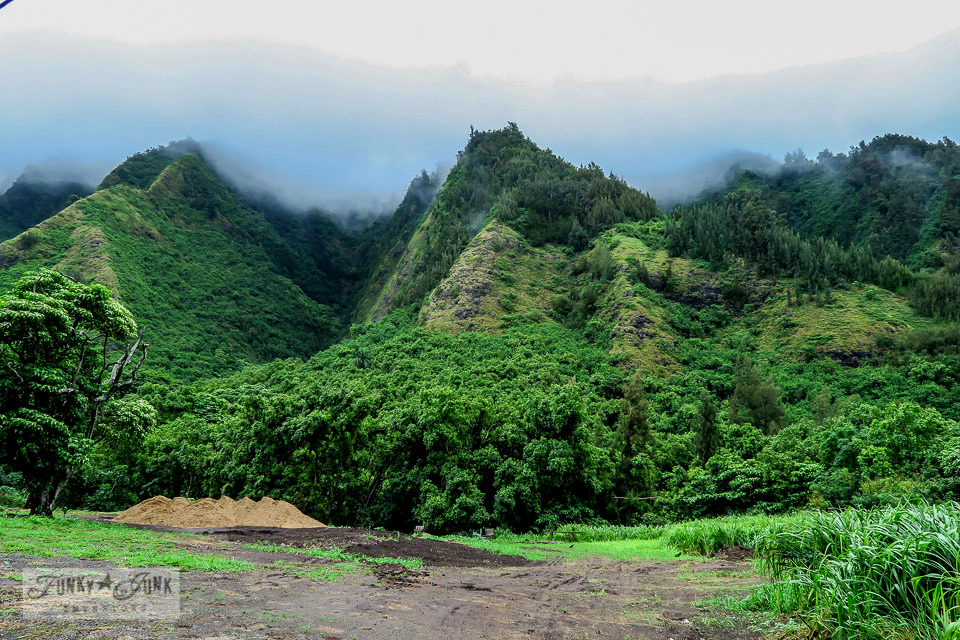 Iao Valley in Maui, Hawaii | funkyjunkinteriors.net