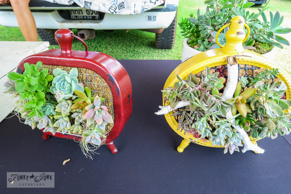 Maui Swap Meet - Maui Succulent Designs, gorgeous creations made from succulents | funkyjunkinteriors.net