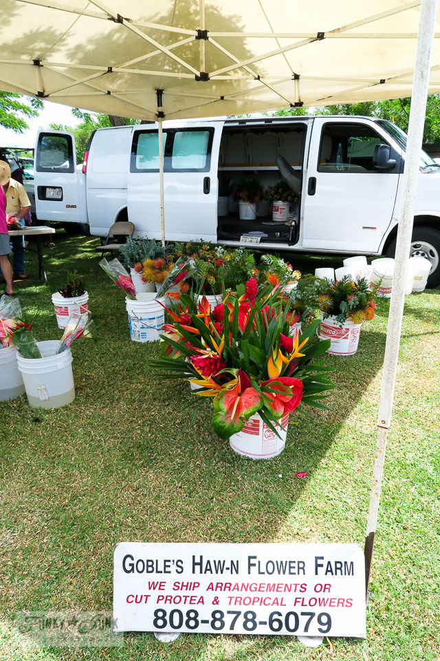 Maui Swap Meet - tropical flowers for sale | funkyjunkinteriors.net