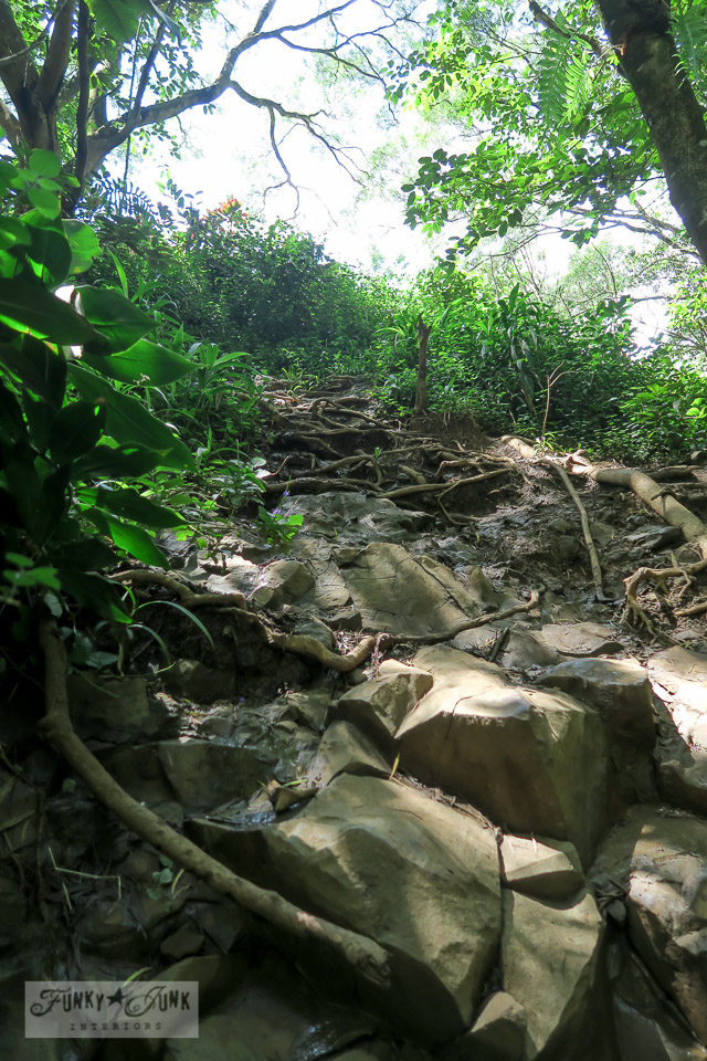 The rocky terrain involved in hiking the trails at Twin Falls, Maui Hawaii | funkyjunkinteriors.net