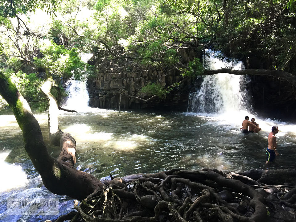 Twin Falls swimming hole, one of many. Maui, Hawaii | funkyjunkinteriors.net