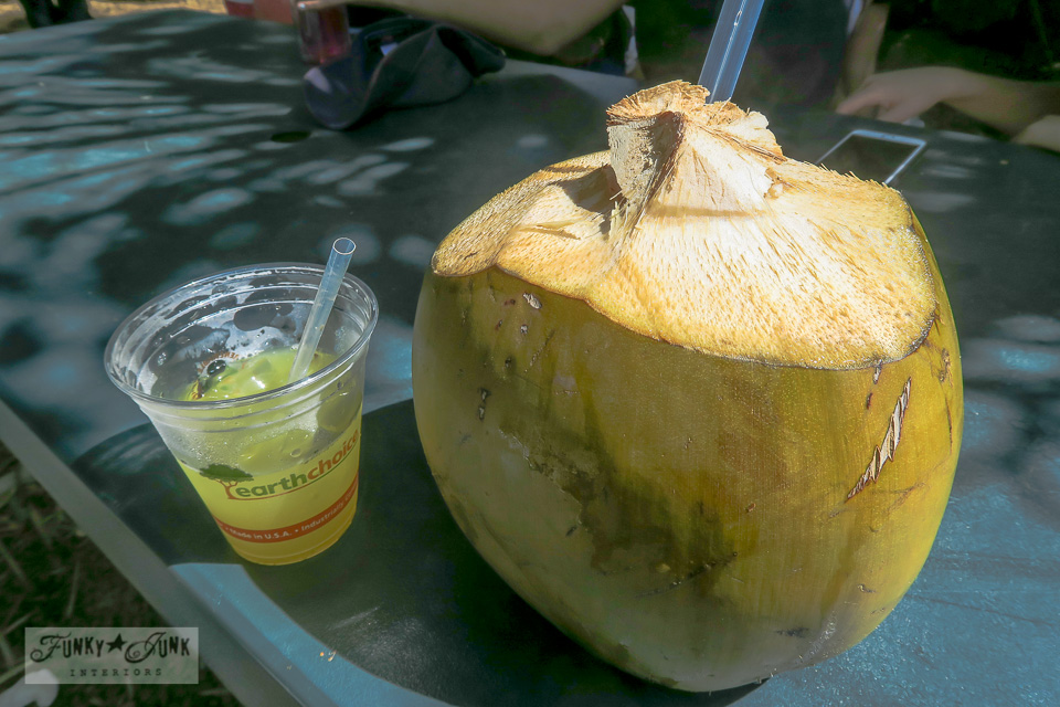 sugar cane juice and coconut at Twin Falls, Maui | funkyjunkinteriors.net