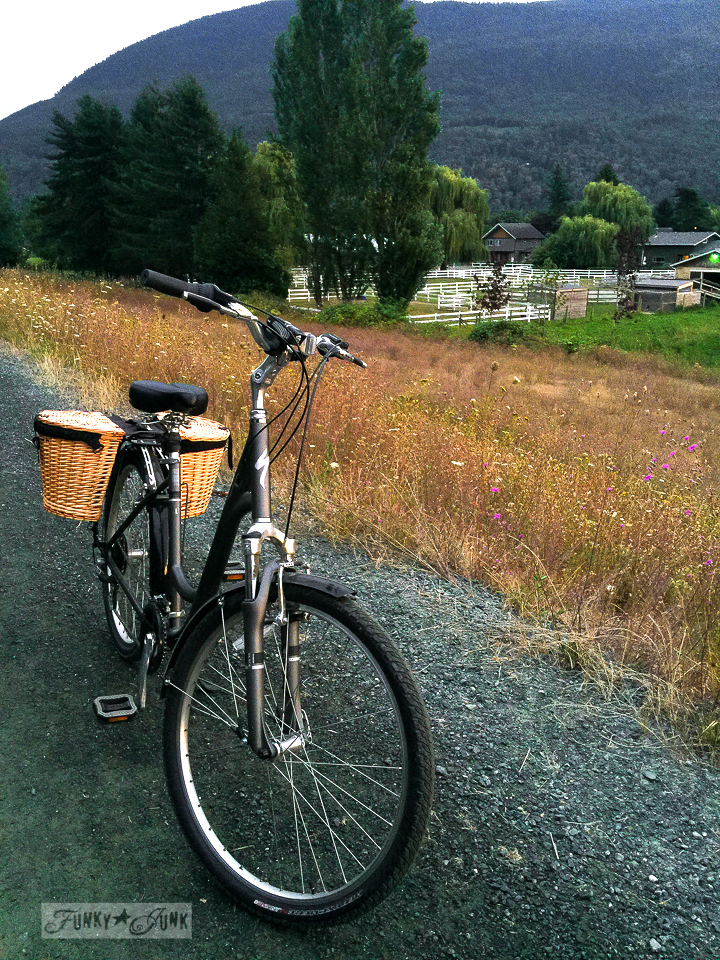 bike riding among wild flowers and sunset | funkyjunkinteriors.net