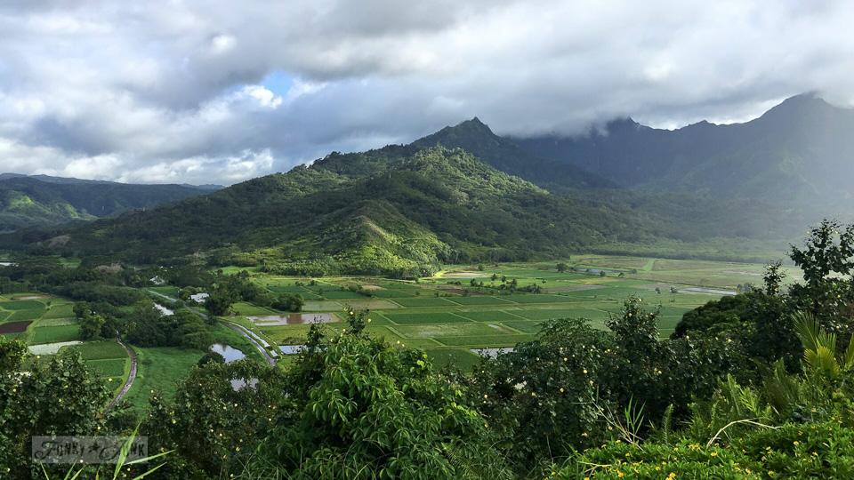 My first impressions of Kauai | funkyjunkinteriors.net