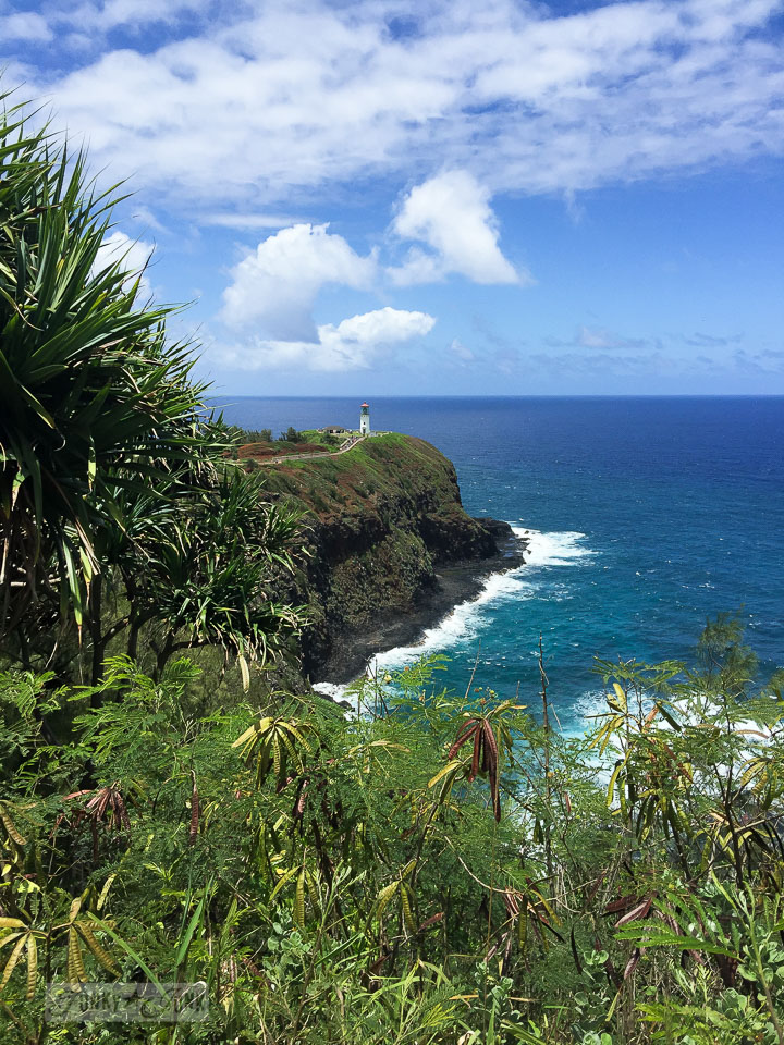 How to travel Hawaii - where to go, what to see, what to do, car rentals, airport shuttles, island hopping and more! Click for the complete guide! Shown: Kauai lighthouse lookout