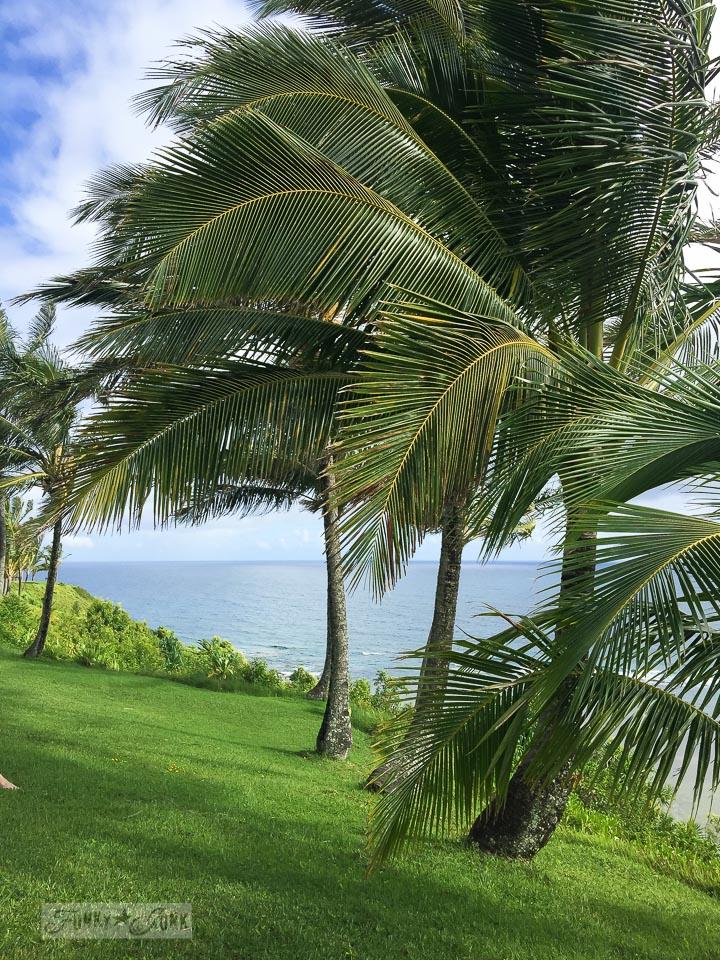 Sea Lodge condo, on Kauai, overlooking the ocean | funkyjunkinteriors.net