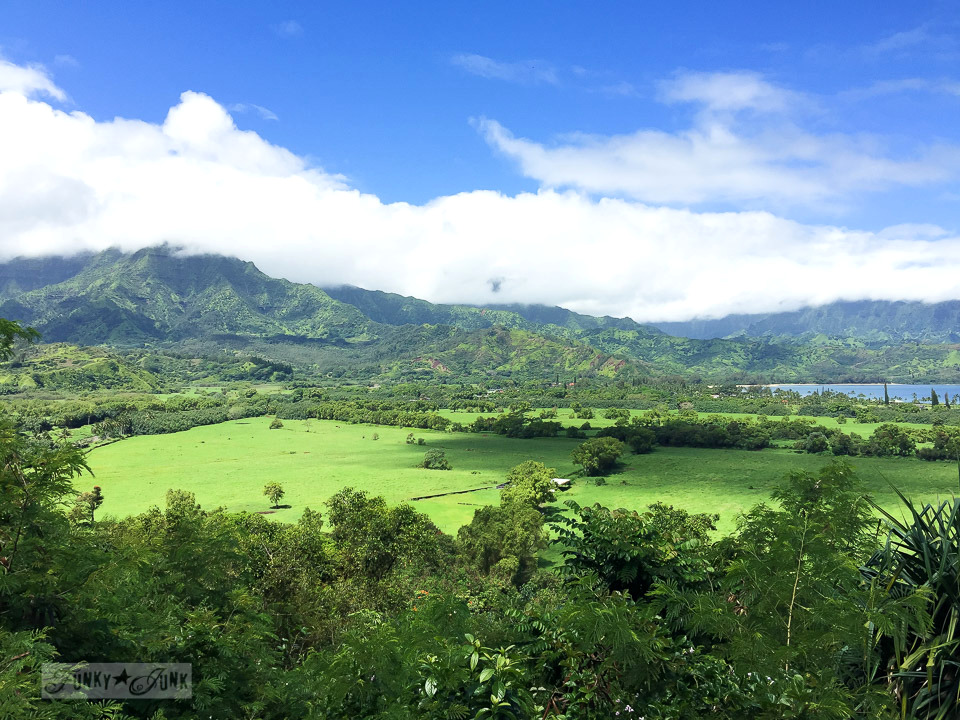 Kauai lookout over the north shore valley | funkyjunkinteriors.net