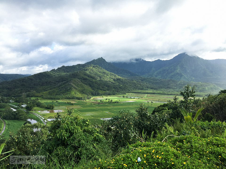 How to travel Hawaii - where to go, what to see, what to do, car rentals, airport shuttles, island hopping and more! Click for the complete guide! Shown: Kauai lookout