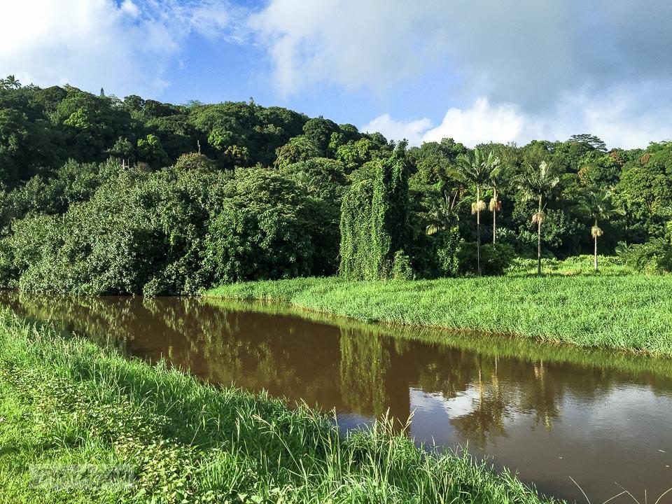 Near Hanalei, on Kauai, overlooking the lush tropical valley | funkyjunkinteriors.net