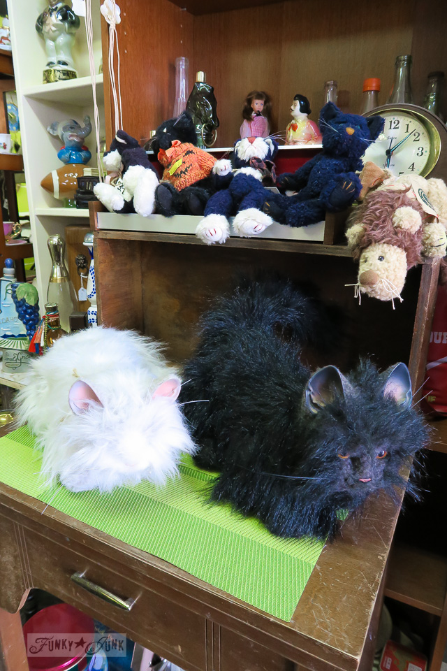 Creepy stuffed cat collection while antiquing on 6th Avenue in Hope, British Columbia, Canada | funkyjunkinteriors.net