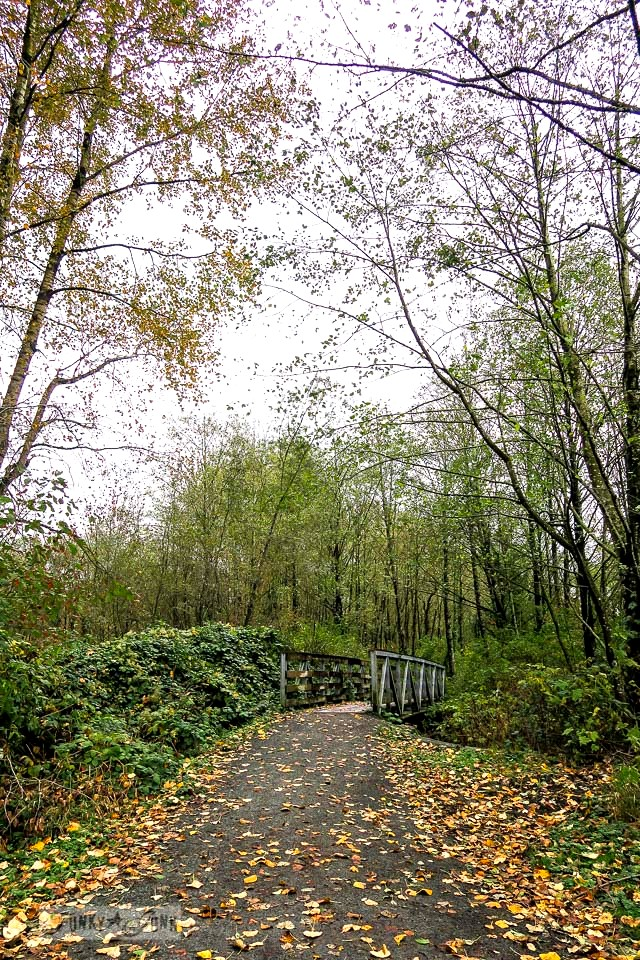 River side bike ride trail during fall, in BC Canada | funkyjunkinteriors.net