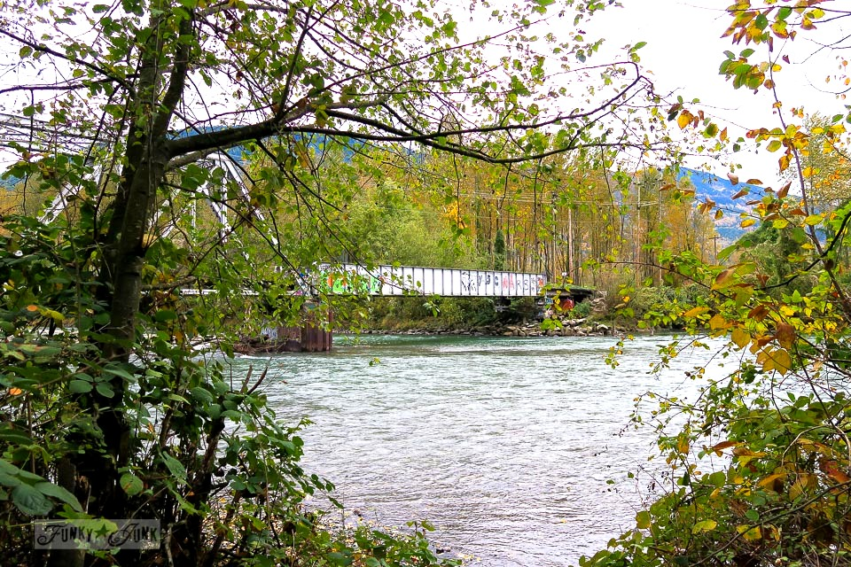 Graphiti covered train bridge crossing the river in BC Canada | funkyjunkinteriors.net