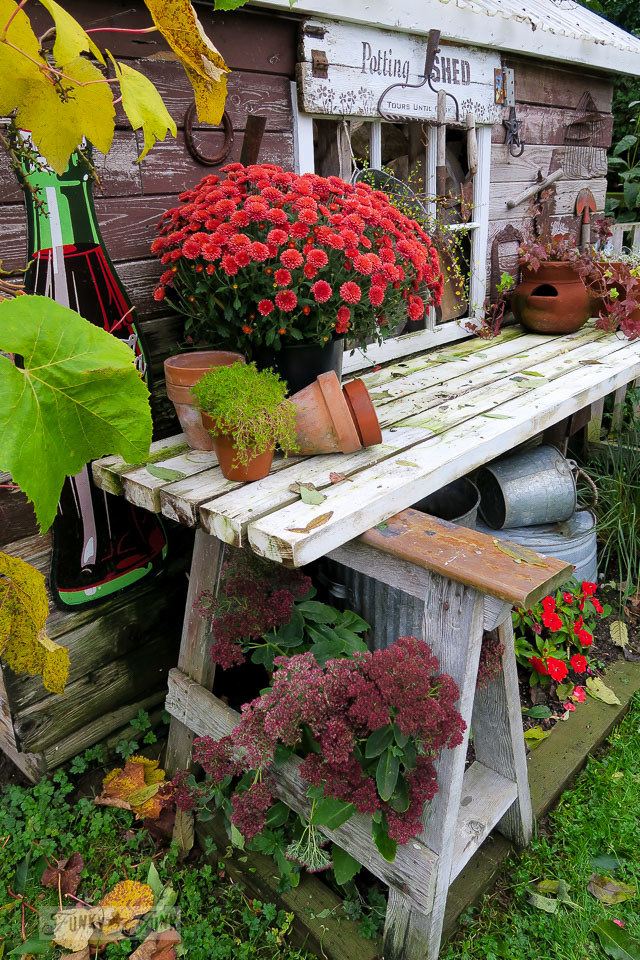 Magnificent Mums And Pumpkins Front Door Fall Decor And Shed Bed Head Tour Uwap Interior Chair Design Uwaporg