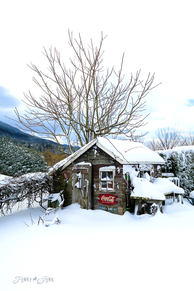 A rustic shed snow day | funkyjunkinteriors.net