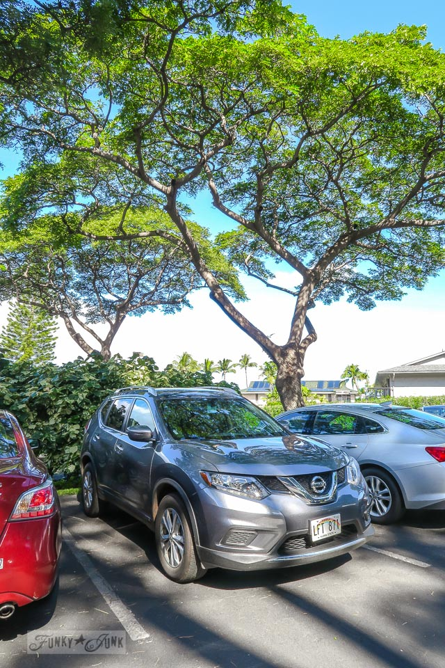 Renting a car on Maui, I highly recommend the Nissan mid sized SUV | funkyjunkinteriors.net