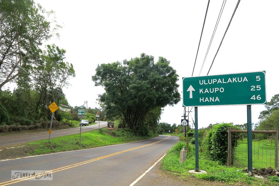 On the backroad to Hana, Maui | funkyjunkinteriors.net