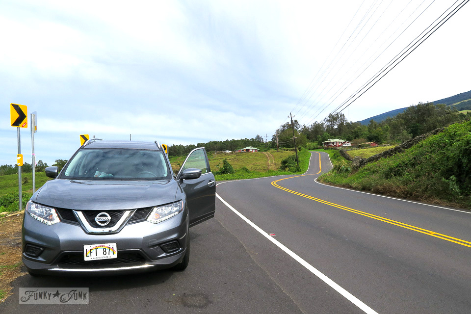 Along the hilly upcountry backroad to Hana, Maui | funkyjunkinteriors.net