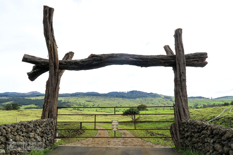 Gated field along the back roads to Hana in Maui | funkyjunkinteriors.net