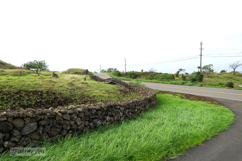 A long, lava rock fence along the hilly upcountry backroad to Hana, Maui | funkyjunkinteriors.net