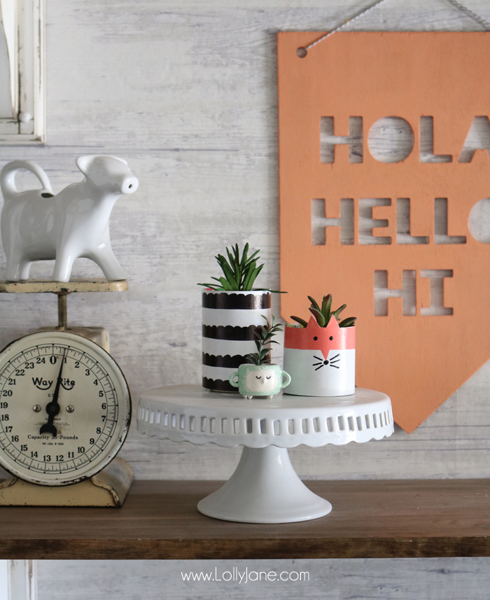 Cereal box succulent planters, by Lolly Jane, featured on Funky Junk Interiors