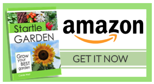Purchase Startle Garden from Amazon HERE