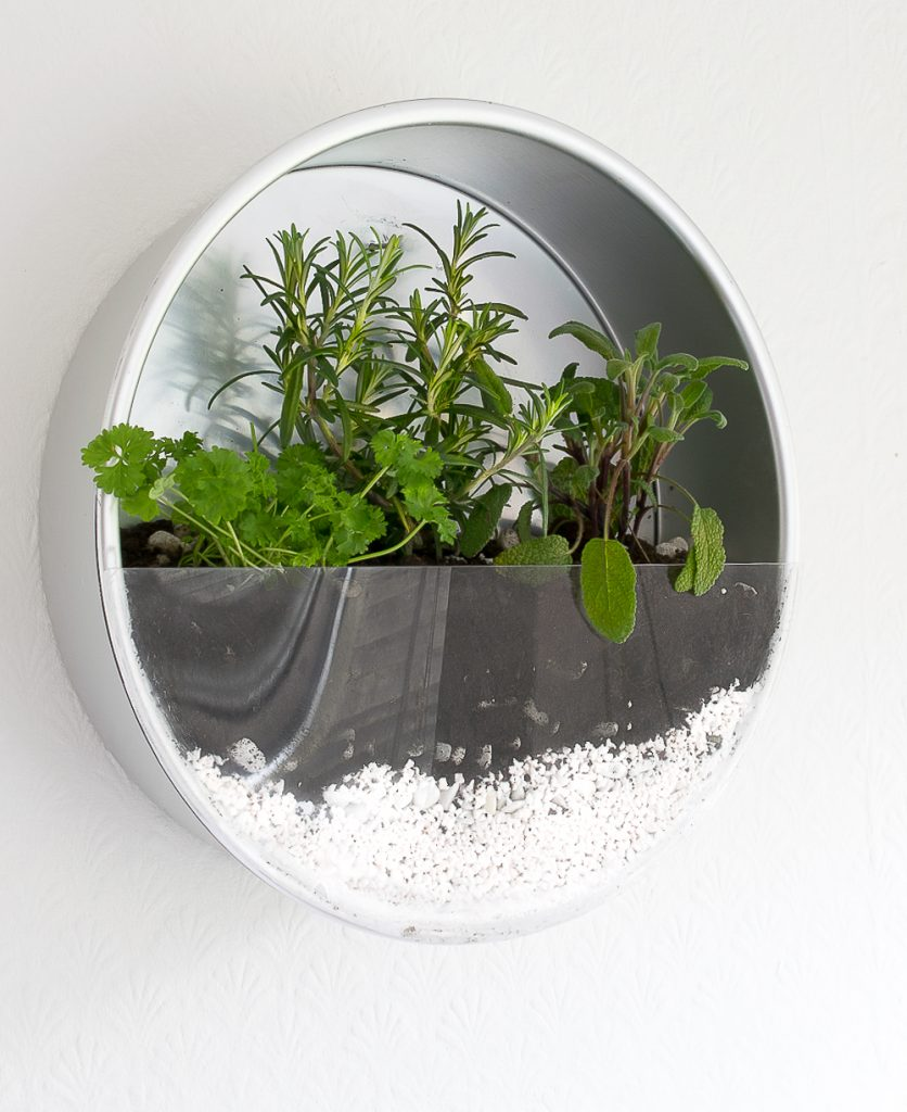 Baking pan indoor hanging herb garden, by Grillo Designs, featured on Funky Junk Interiors